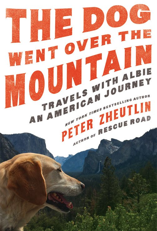 Book Cover for The Dog Went Over the Mountain
